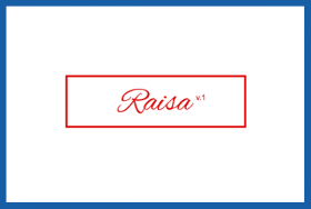 Raisa WP Theme V.1